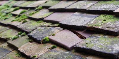 Broadway roof repair costs